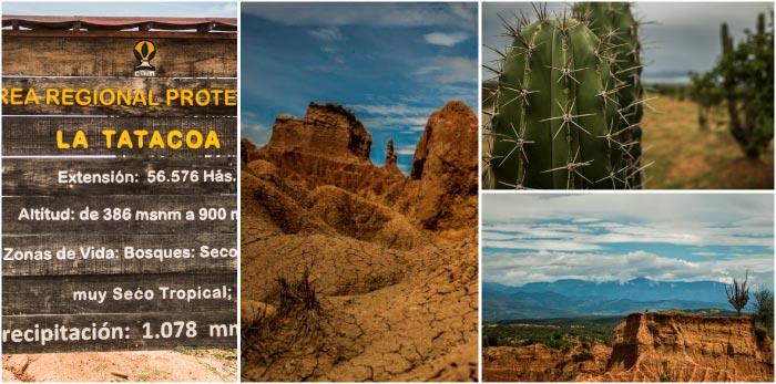 Cómo llegar y qué hacer en el desierto de la Tatacoa