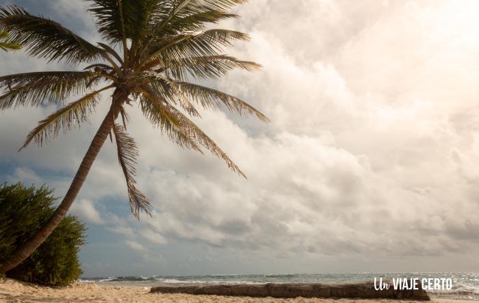 Visitar las playas de Johnny Cay