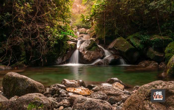 cascadas en manantiales del campo