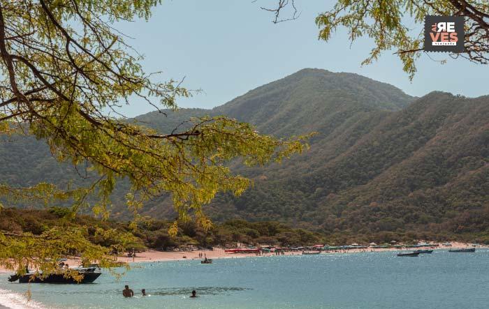 Bahía Concha